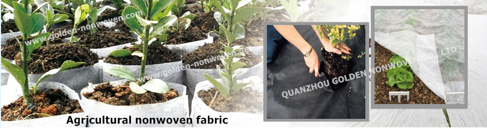 agriculture nonwoven fabric