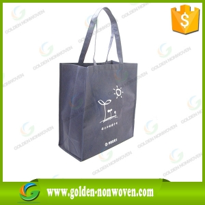 Wholesale Reusable PP Non Woven Shopping Bag