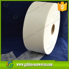 Water Absorb Hydrophilic Non Woven Fabric