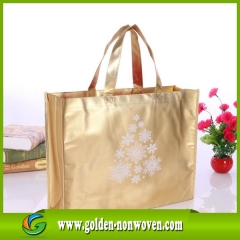 Fast Delivery laminated waterproof non woven bag